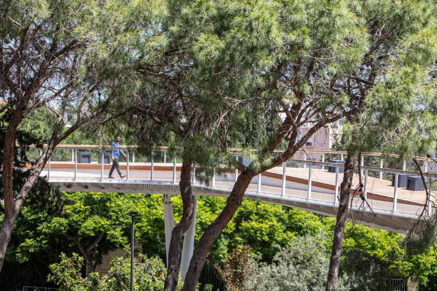 Вид с уровня глаз на мост у входных ворот Техниона среди деревьев