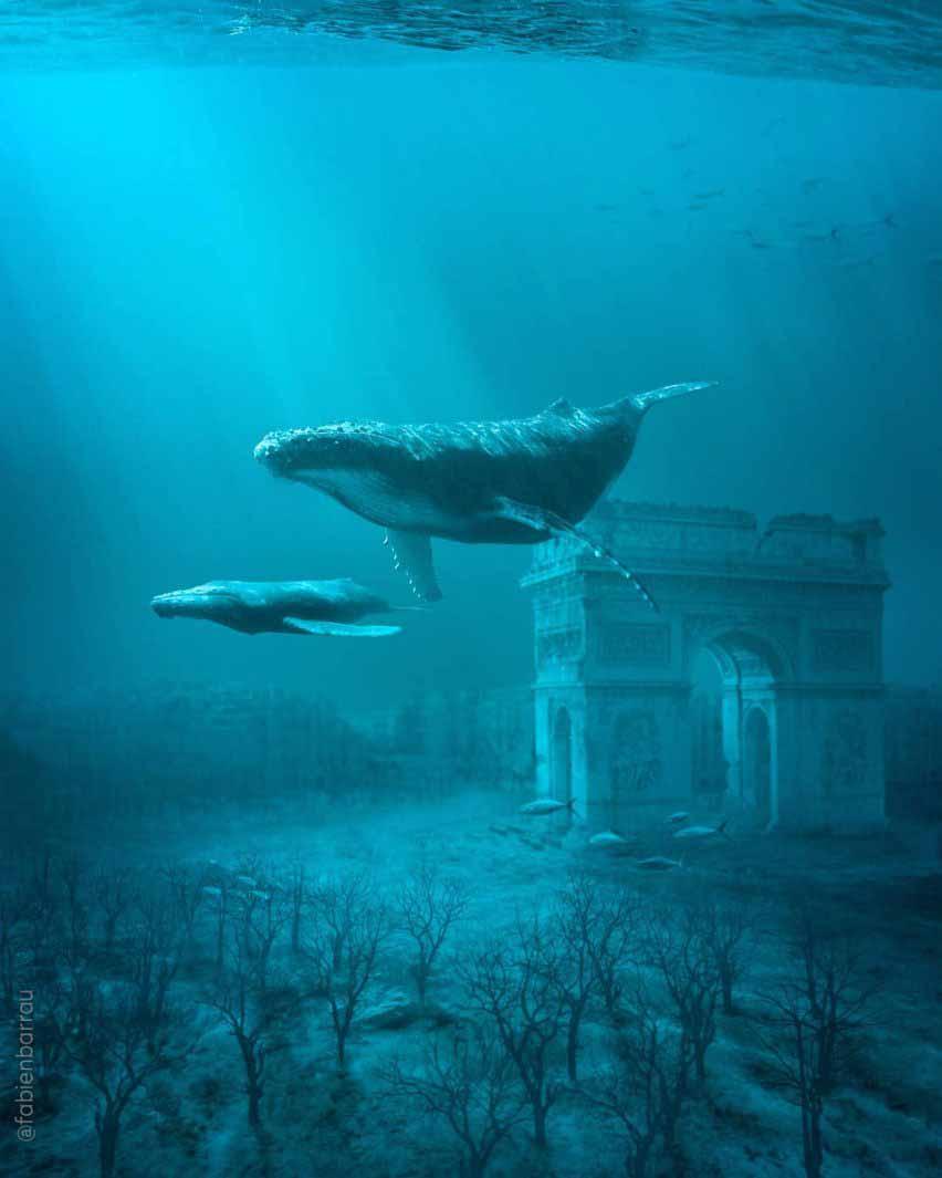 Париж и киты из журнала