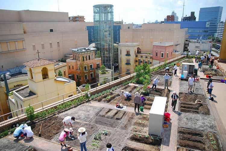 Япония вводит городские огороды на вокзалах. Предоставлено popupcity.net