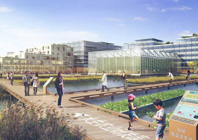 Sasaki представляет дизайн для Сунцяо, городского фермерского района площадью 100 гектаров в Шанхае © Sasaki