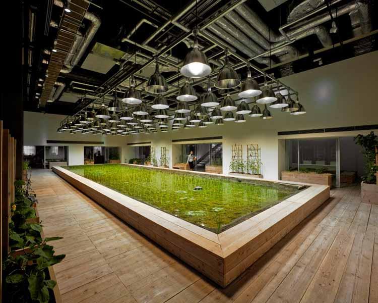 В Токио вертикальная ферма внутри и снаружи. Предоставлено Kono Designs