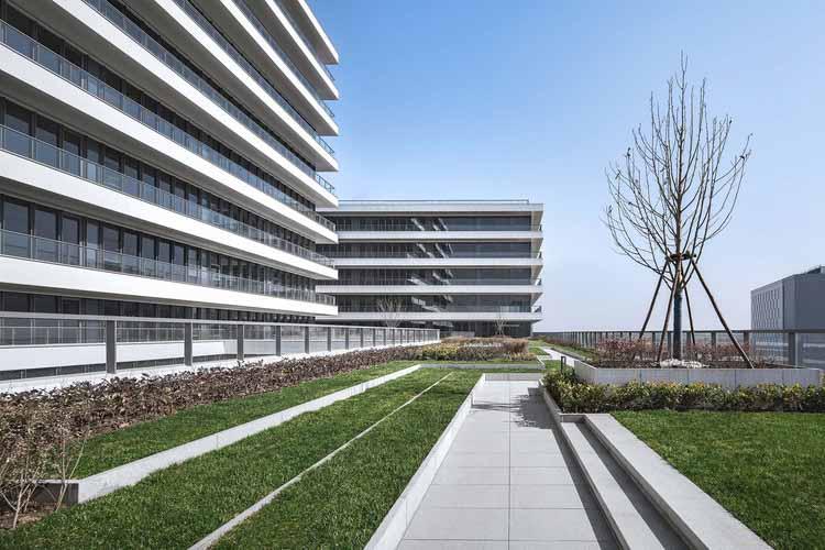 Сад на крыше. Изображение © Xunmei Media
