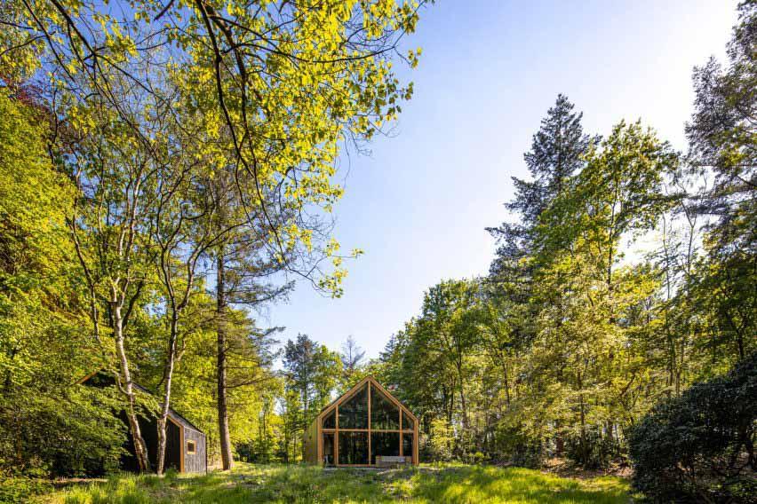 Деревянный домик с застекленными стенами в лесном проеме