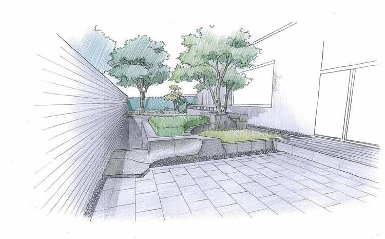 sketch_entrance и площадь газона