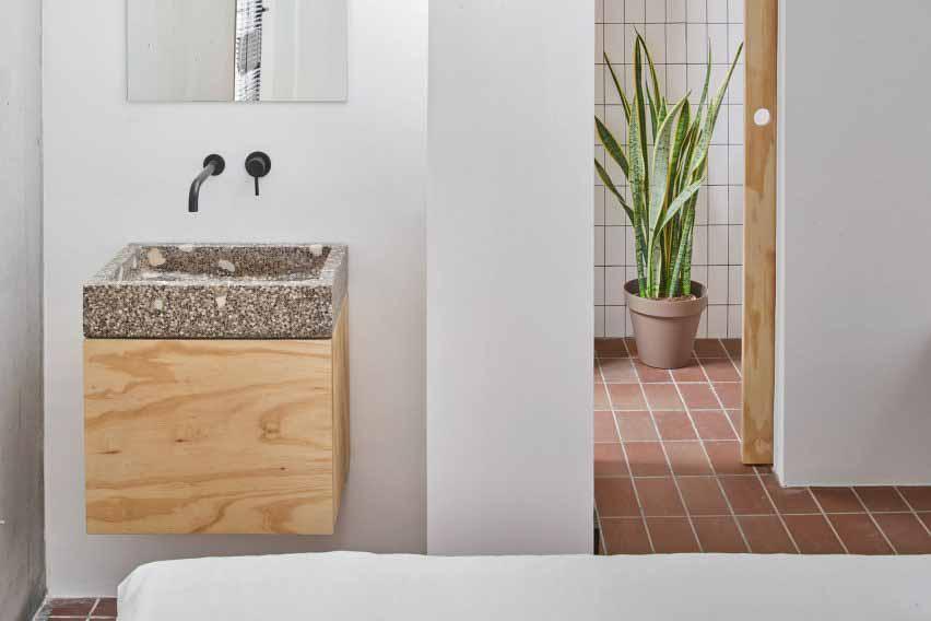 Ванная комната с белыми стенами и змеиным растением