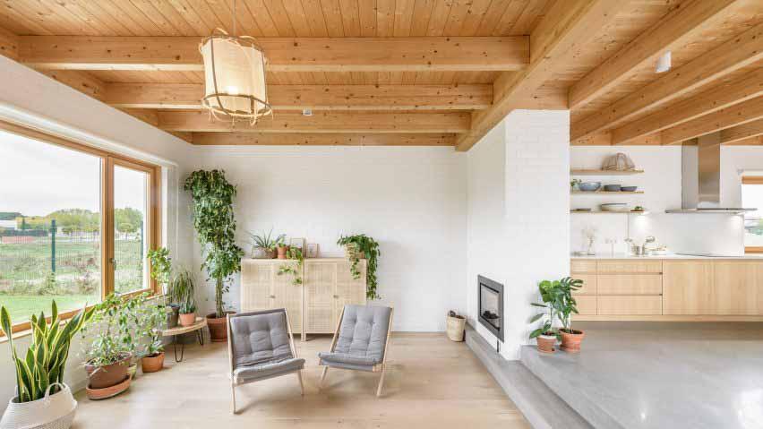 Гостиная с белыми стенами и комнатными растениями