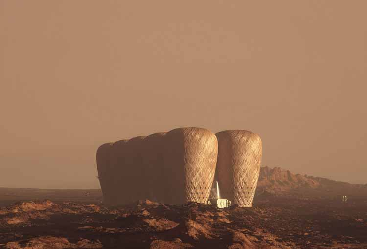 Марсианское Семя Жизни / Варит Заки + Амир Амзар. Изображение © Карим Мусса, Варит Заки, Амир Амзар, Насрил Зарудин