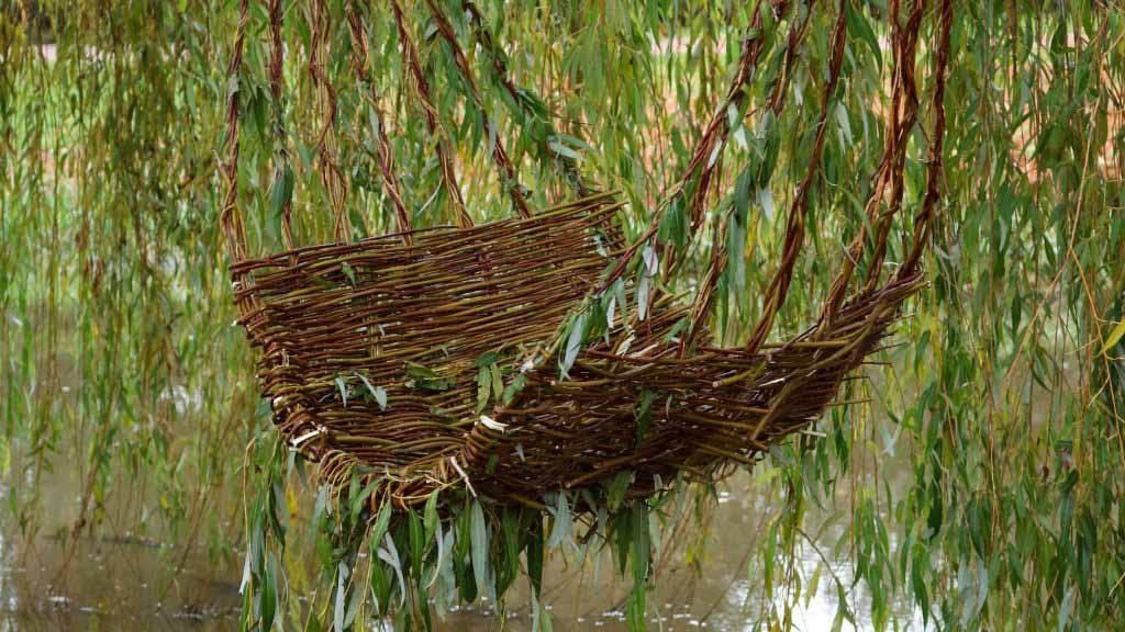 Херардо Осио плетет стул из плакучей ивы на реке Доммель