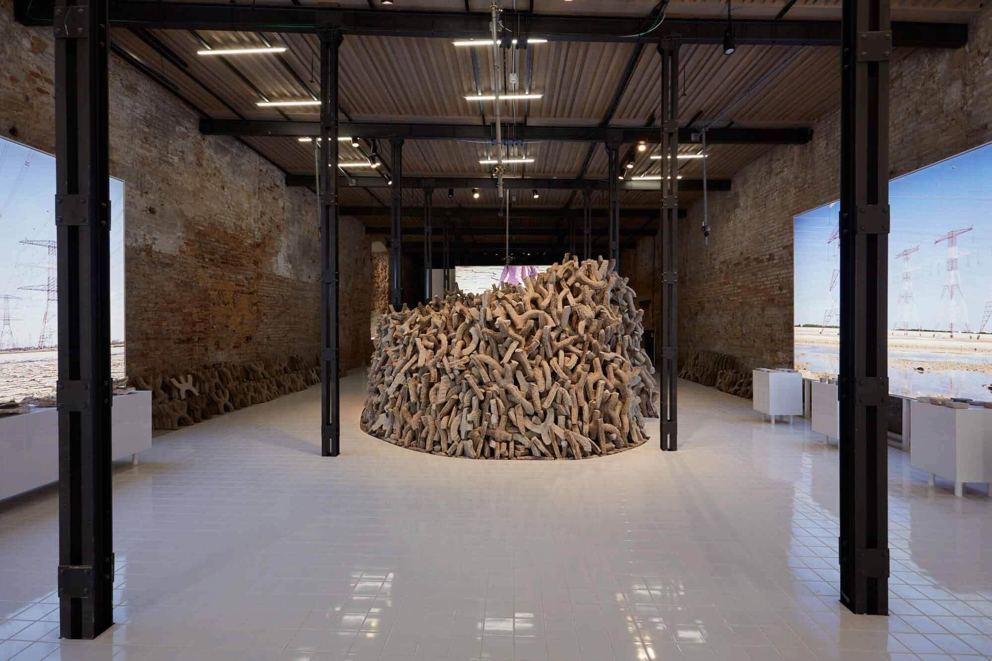 ОАЭ / Водно-болотные угодья выиграли Золотого льва за лучшее национальное участие на Венецианской биеннале 2021 года