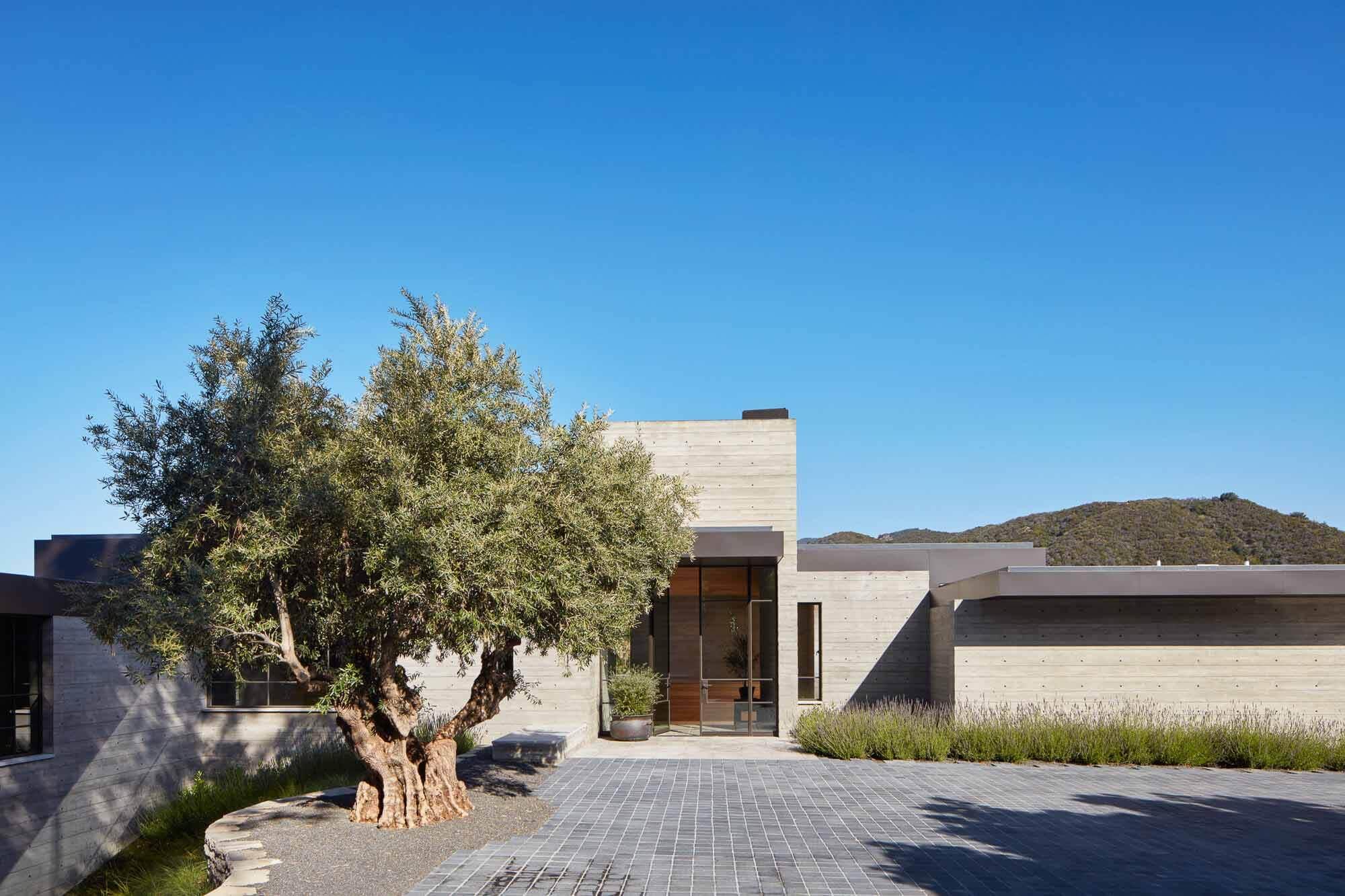 Дом на склоне холма для здорового образа жизни / Abramson Architects