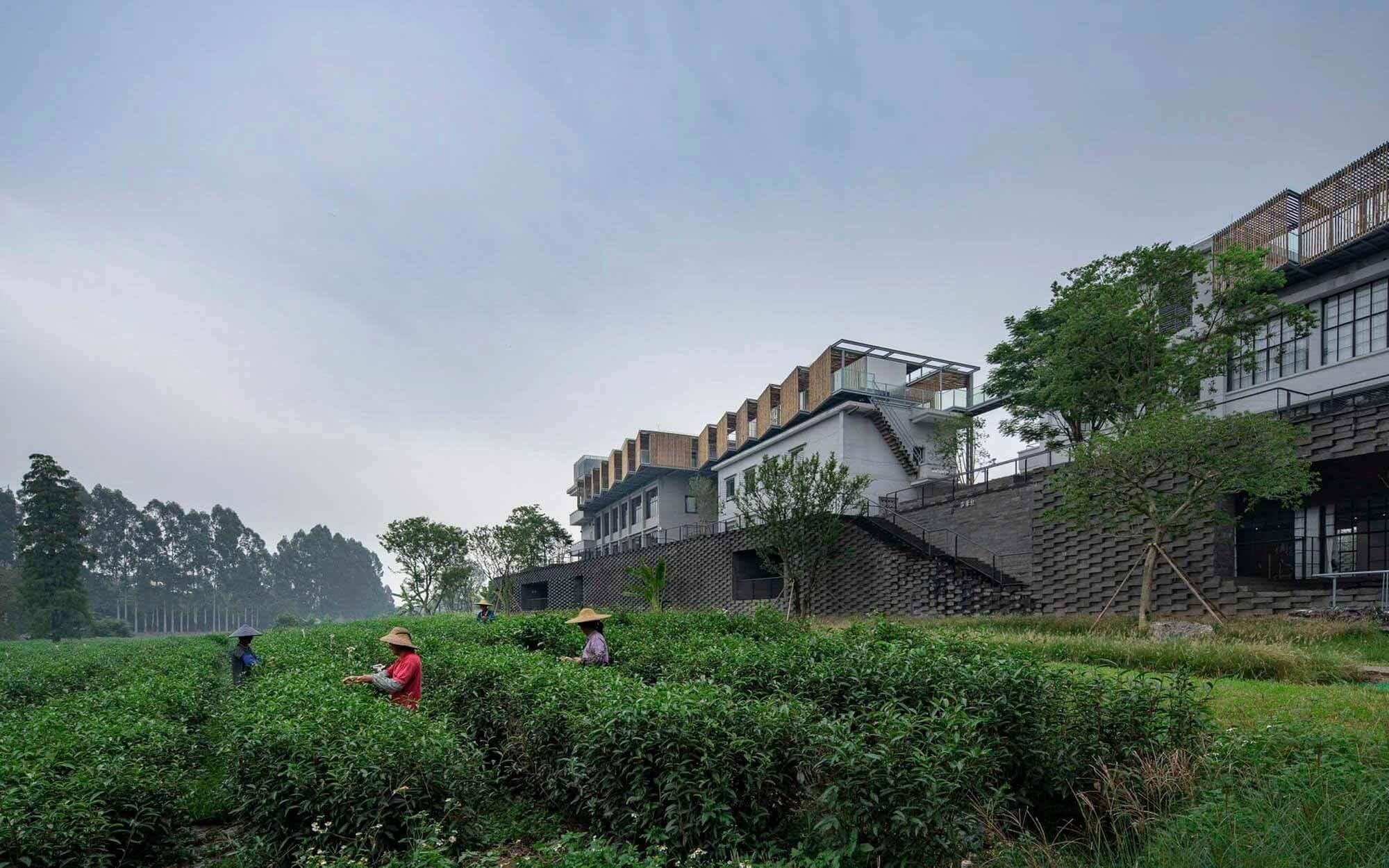 (Ре) формирование Duichuan Tea Yards / O-office Architects