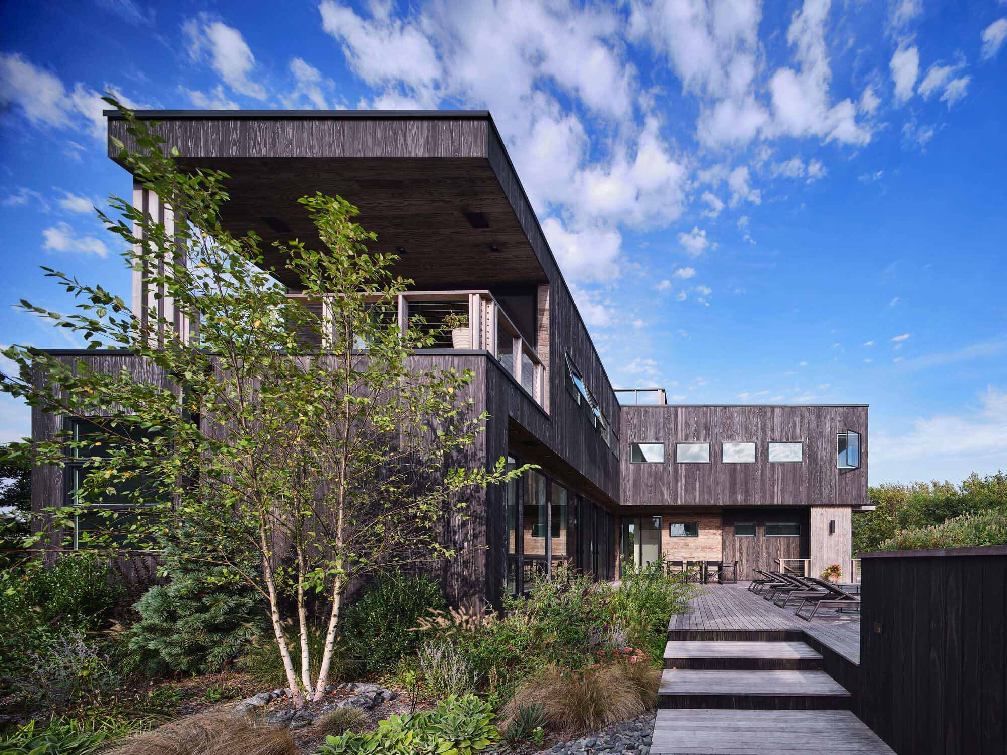 Дом можжевельника Fire Island / Paul Coughlin Annie Scheel Architects