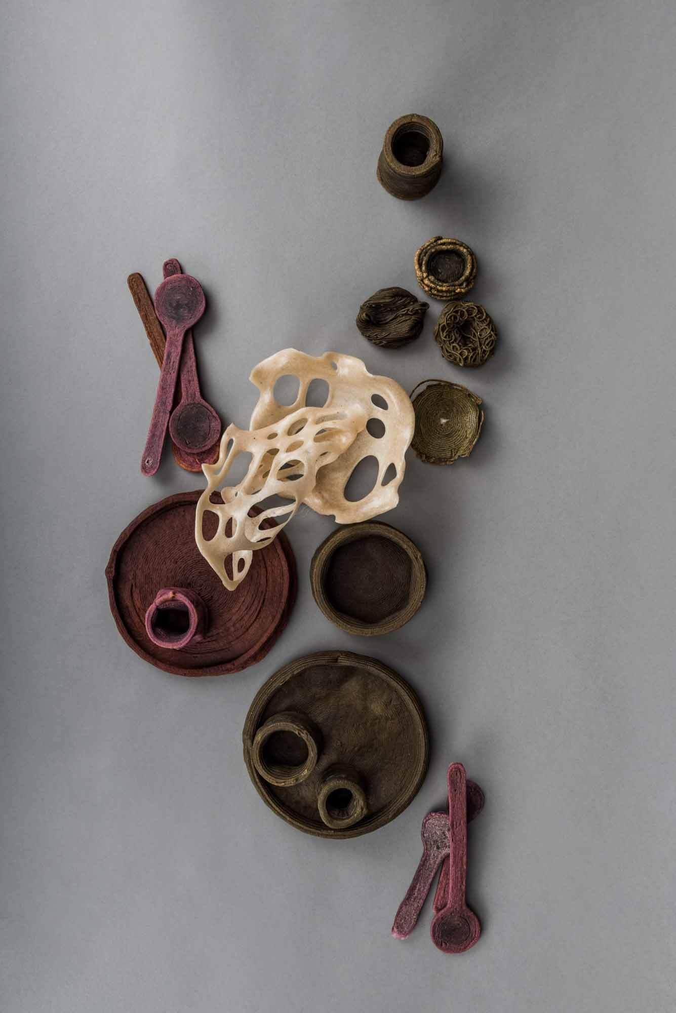 Барбара Голлакнер представляет посуду из пищевых отходов на Венской неделе дизайна