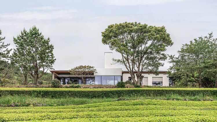 Osulloc Sullochyangsil House / One O One Architects, © Jang Mi