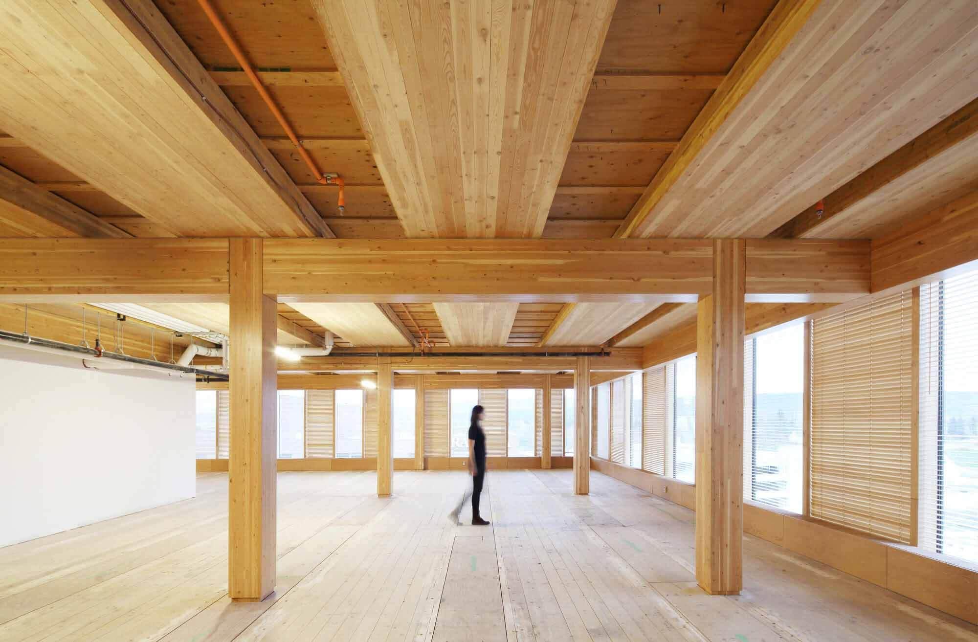 Центр инновационного дизайна древесины / Архитектура Майкла Грина