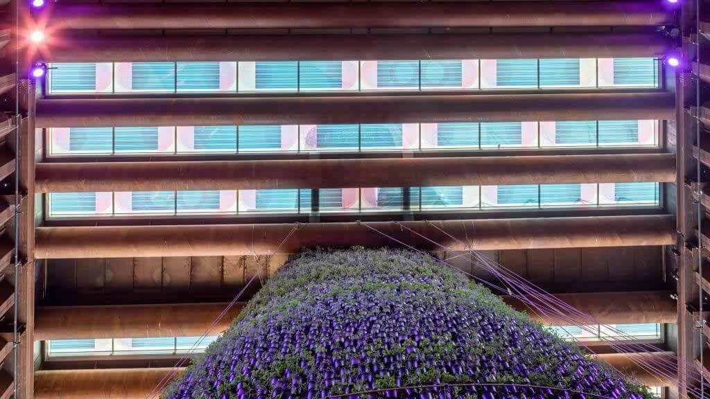 Марьян ван Обель создает красочное окно в крыше с солнечными панелями для выставки Dubai Expo